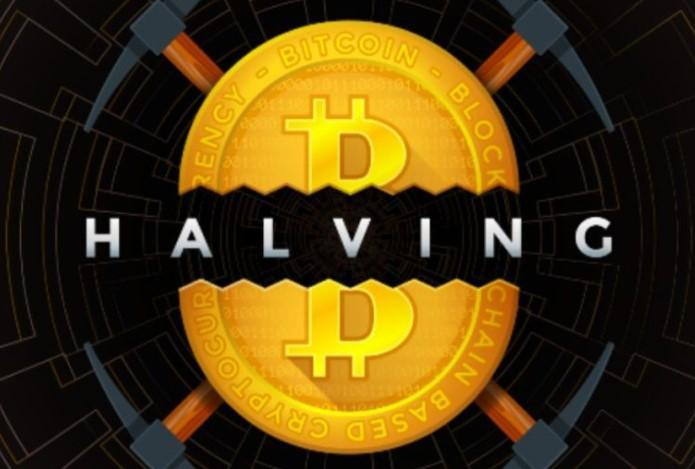 Bitcoin Halving Infographic